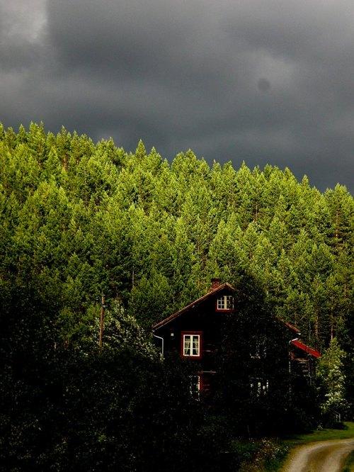 Svezia 2007
